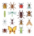 Insect flat icons isolated on white vector image