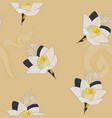 thai artificial funeral daffodil flower or dok vector image vector image
