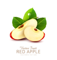 two slices red apple with green leaf isolated vector image