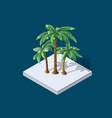 winter christmas palm vector image