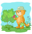 cat gardener with a butterfly vector image vector image