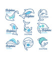 dolphine logo templates set nautical design vector image