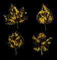 golden leaves on black background vector image