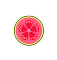 guava in cut top view flat design vector image vector image