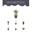 isometric flower set of plant houseplant grower vector image