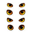 owl eyes realistic collection vector image vector image