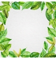 square frame made spring leaves in watercolor vector image vector image
