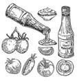 tomatoes and ketchup set sketch vector image vector image