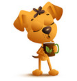 yellow funny dog holds mug and drinks black hot vector image vector image