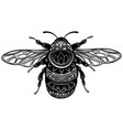 bee with patterns black white bee with ornaments vector image vector image