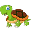 Cute baby turtle posing isolated vector image vector image