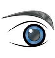 human eye optical eyeball symbol vector image