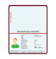 passport identification document vector image