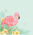 pink flamingo and flowers vector image vector image