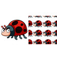 seamless background design with cute ladybug vector image vector image