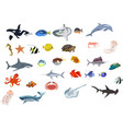 set many sea creatures different kind sea vector image