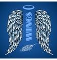 sketch wings vector image