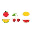 apple melon cherry lemon and watermelon fruits vector image vector image