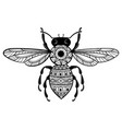 bee with patterns black white with ornaments vector image vector image