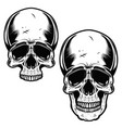 collection of hand drawn skulls in monochrome vector image vector image