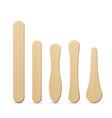 ice cream wooden sticks flat vector image vector image