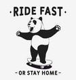 panda skateboarder vector image