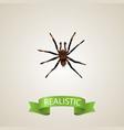 realistic tarantula element vector image