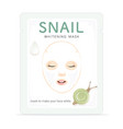 snail whitening mask vector image vector image