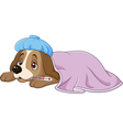 Cartoon sick dog with ice bag and thermometer vector image