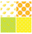 citrus fruits bright seamless pattern vector image vector image