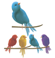 Colorful birds vector image vector image