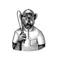dog character bulldog baseball player with a bat vector image