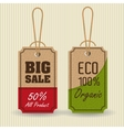 Ecology label and tag theme vector image