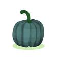 flat icon of acorn squash natural farm vector image vector image