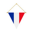 french triangle flag hanging vector image
