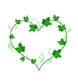 Green Ivy Leaves in Beautiful Heart Shape