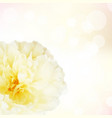 Pastel flowers with bokeh vector image