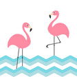 pink flamingo family set blue sea ocean water vector image vector image