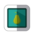 sticker colorful square with pear fruit vector image vector image