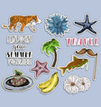 summer vocation stickers set traveling time vector image
