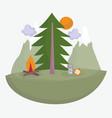 camping lantern compass bonfire tree vacations vector image vector image