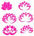 set lotus flower logos vector image