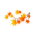 A view of a Leaf vector image vector image
