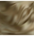 Abstract Texture Brown Silk vector image vector image