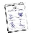 Handdrawn set - Ayurvedic Herbs vector image vector image