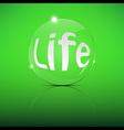 Life Focus Convex Len vector image vector image