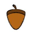 acorn icon image vector image