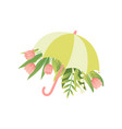 bouquet of pink tulip flowers and green umbrella vector image vector image