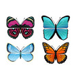 butterflies collection types vector image