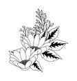 floral tropical cartoon vector image